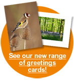 See our new range of greetings cards!